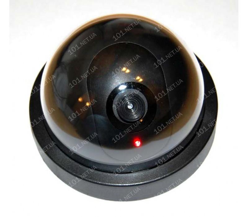 Муляж MS006DR внутренней камеры